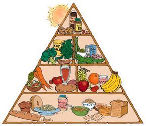 piramide alimenti